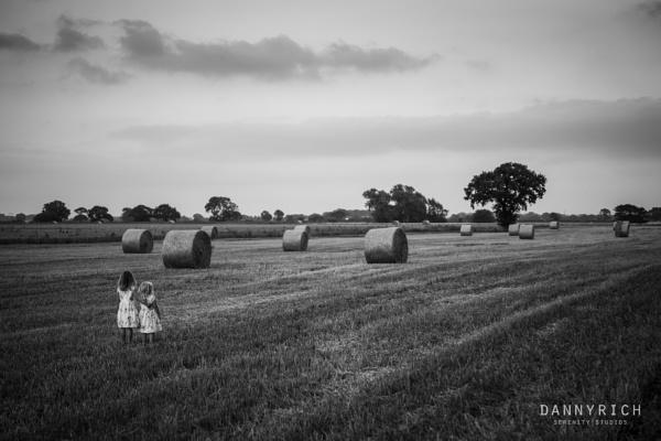 Summer Fields by dannyrich