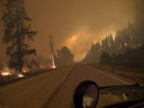 through the firestorm by wm