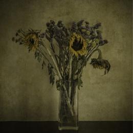 Flowers bygone