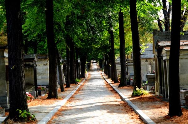 Père Lachaise Cemetery by njaque