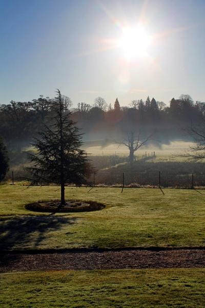 frosty morning by grlloyd