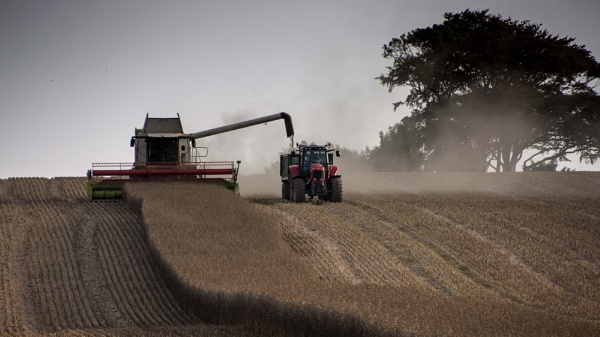 Combining has started again.... by milepost46
