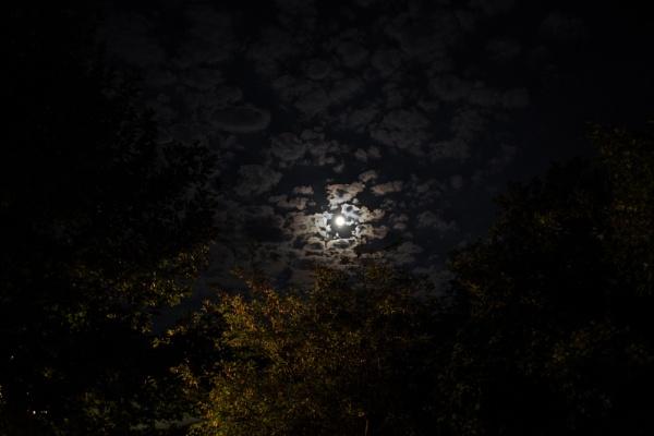 Night sky by derrymaine