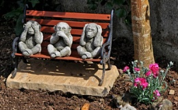 Silly Sunday - The Three Wise Monkeys