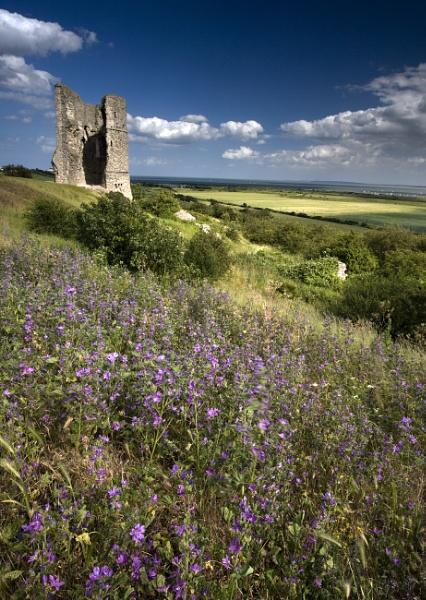 hadligh castle by mianby