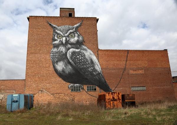 Belgium Graffiti by NeilSchofield