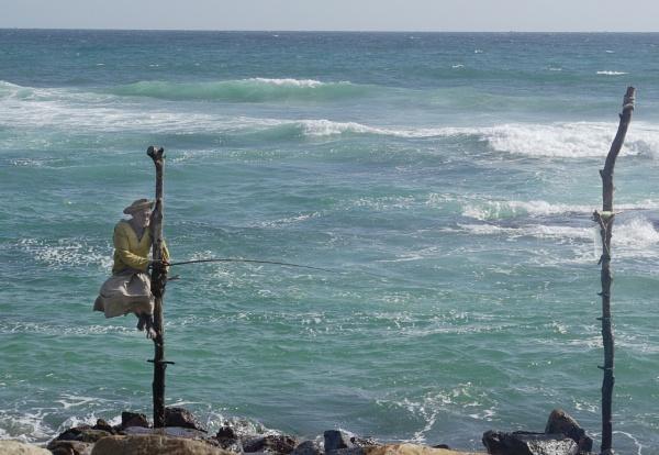 Stilt Fisherman, Sri Lanka by TonyDy