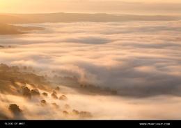 Flood of Mist