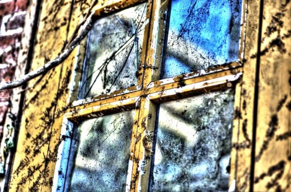 old window by burd