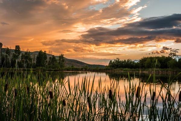 Sunset Pond by ssnidey