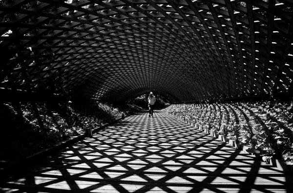 Web of shadows by TeruoAraya