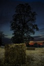night in the hay