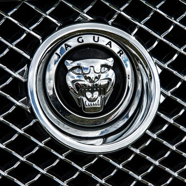 Jaguar logo by morpheus1955