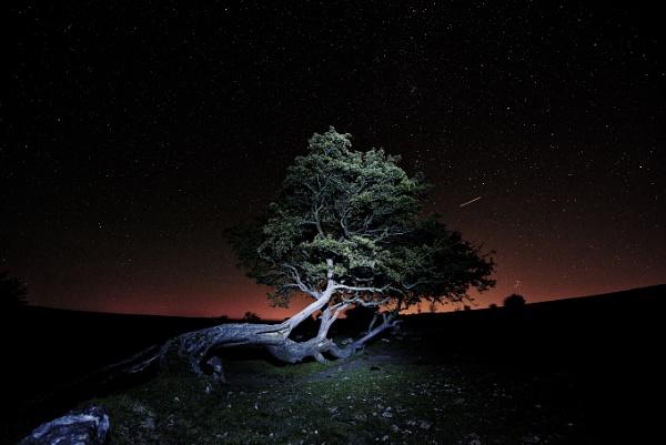 night sky by Dugs