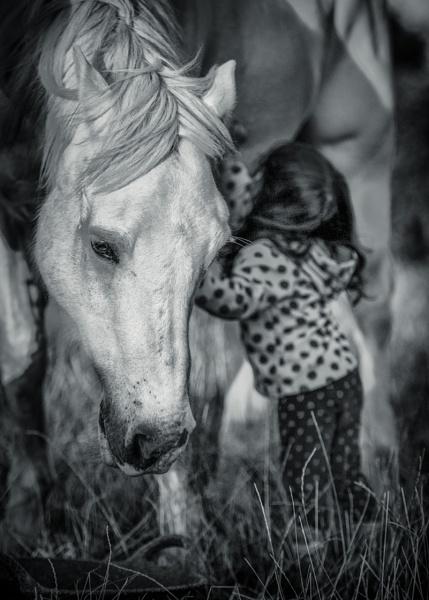 Friends by EdricCross