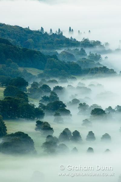 Chatsworth Park mist - Peak District