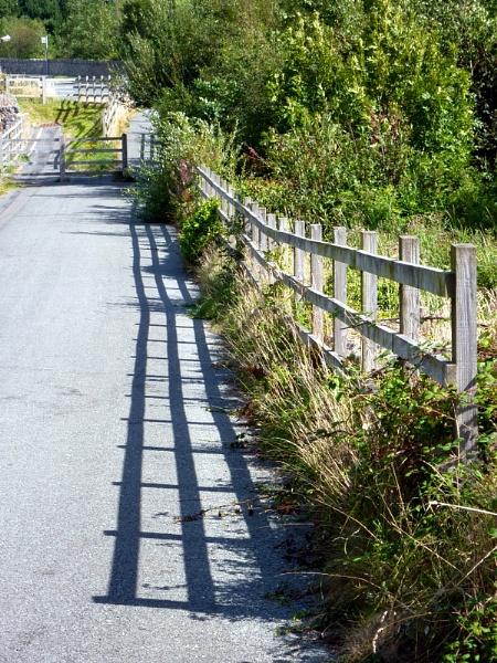 Cycle Path Shadows by netta1234