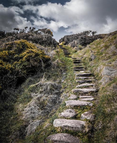 Steps by CDSINUK