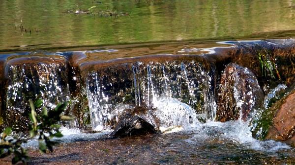 Tiny waterfall .. by ejakzzz