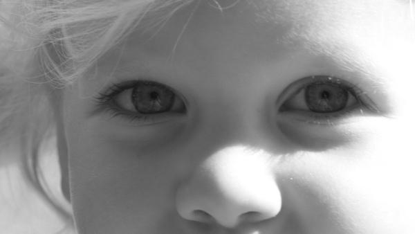 Eye Eye by louiserogers