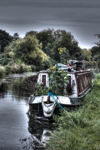 Sunflower Barge by mark2uk