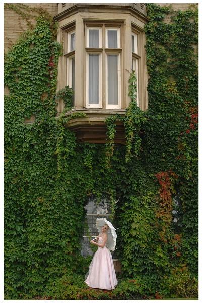 bridal 1 by roybridgewood