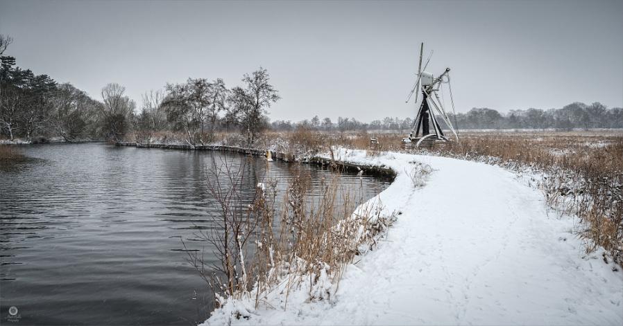Wintery Broad