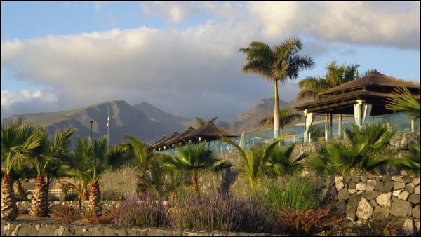 Sub-tropical Garden