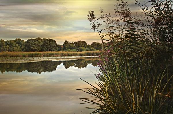 Hatch Pond by sluggyboy