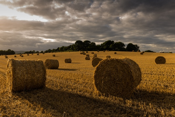 Hay Bales Derbyshire by RoyChilds