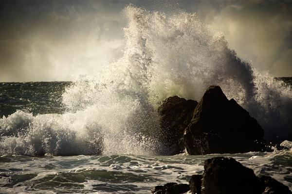 Splash by Audran