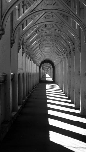 morning shadows by kevlense
