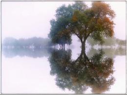 Autumn mirages ...
