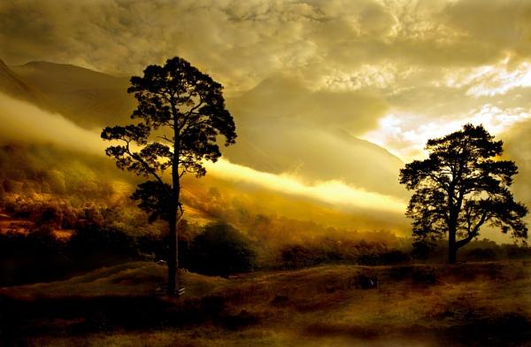 Autumn in the glen by BevHadland