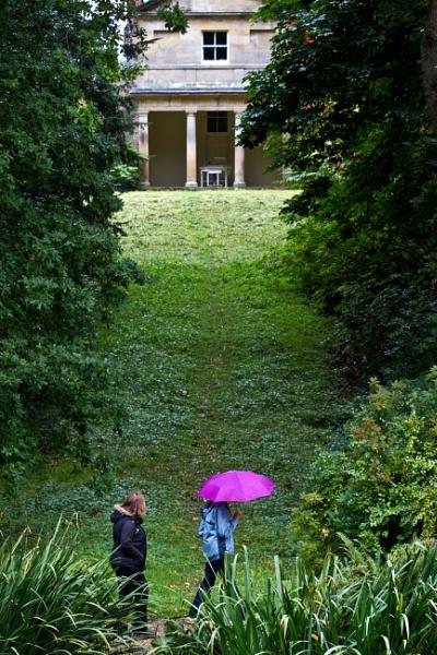 The Purple Umbrella by rambler