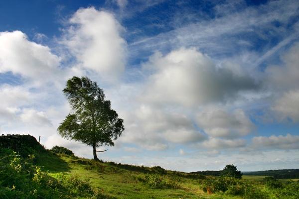 Beacon Hill by nanpantanman