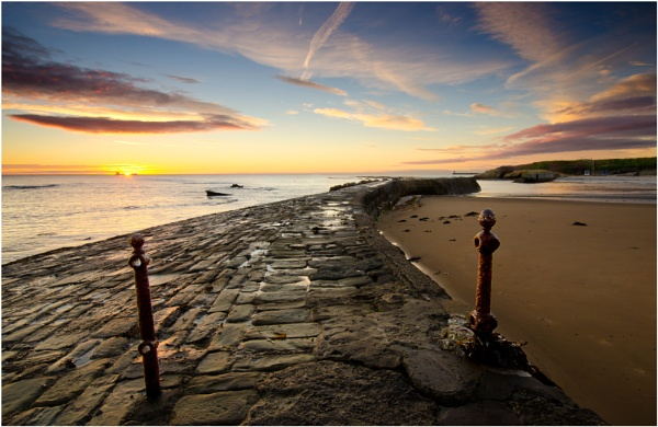 Cullercoats Harbour by wanny