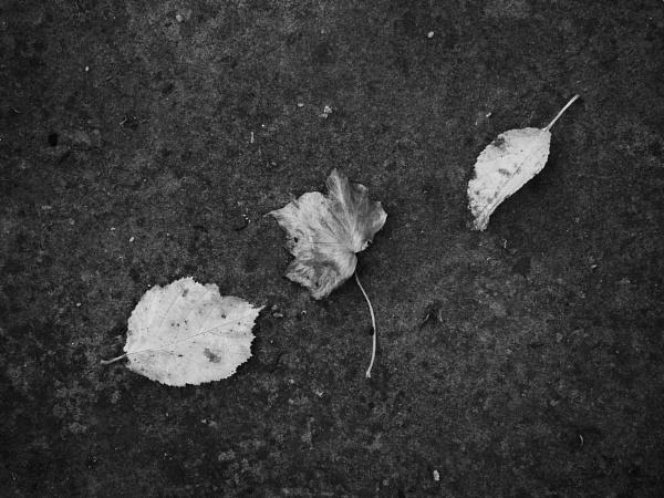 three fallen by Griff2012