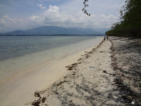 straight ahead by beachnsand