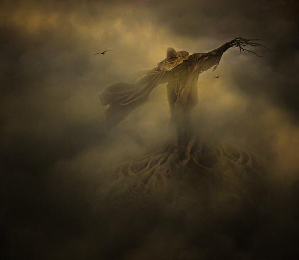 The Watcher by clintnewsham