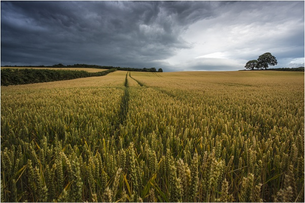 Storm incoming by Alan_Coles
