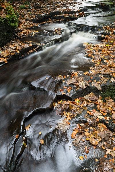 River Roddlesworth by mickp