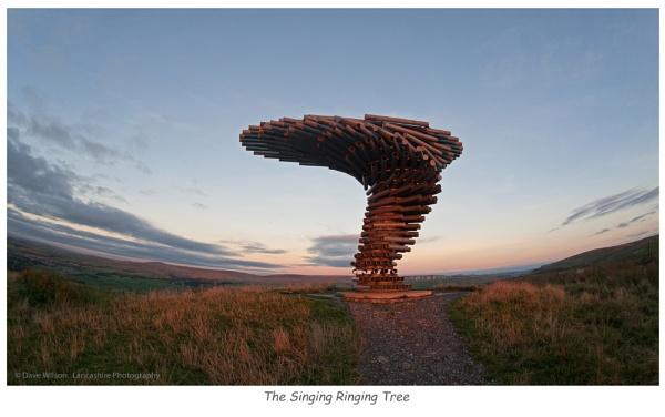 Singing Ringing Tree. by lancashirepictures