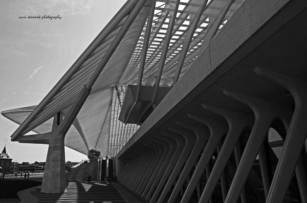 designed by Santiago Calatrava by senn