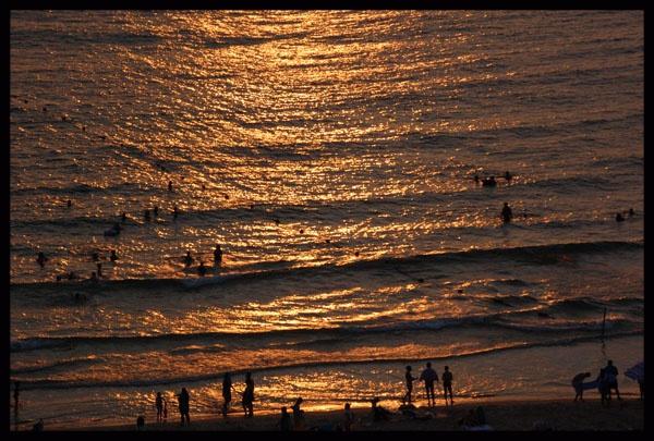 Evening swim! by minamahal