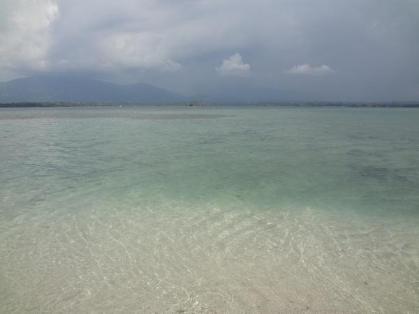 greenish by beachnsand