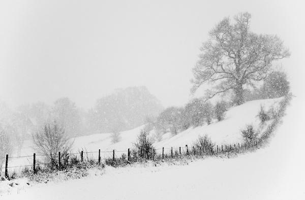 Winter landscape by Standonman