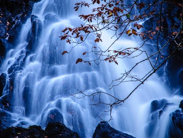 Cree Woods Falls