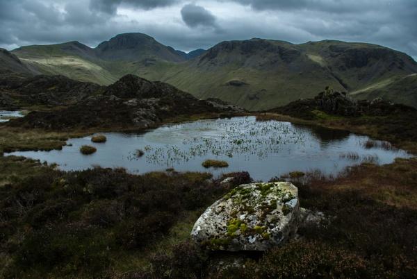 Lake District View by Osool