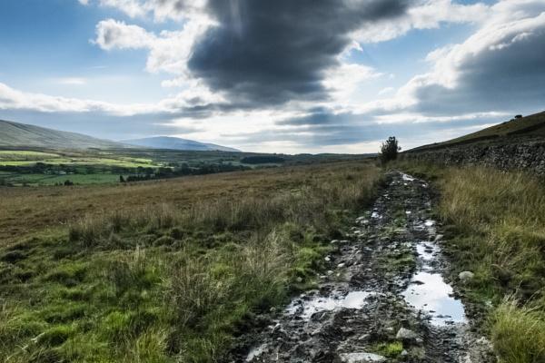 Muddy Path by stevew10000
